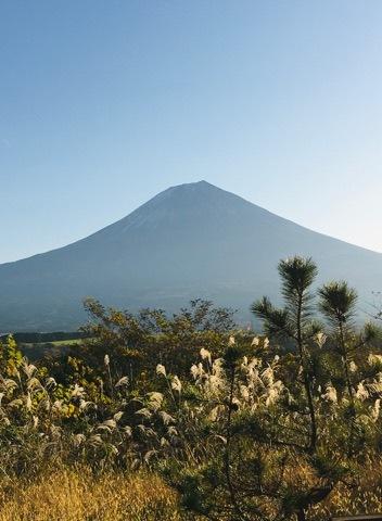 富士山静養園へ -地域・コミュニティ・循環、そして源流へ ー_a0020162_13472080.jpg