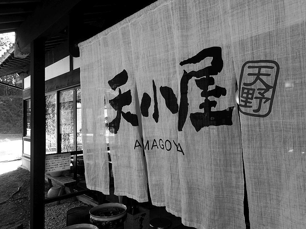 引佐町的場「天小屋」さんで鴨南蛮つけ蕎麦_e0220163_16444483.jpg