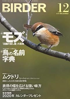 ★BIRDERに元鳥類園スタッフ松本くんの記事が掲載されました_e0046474_11361102.jpg