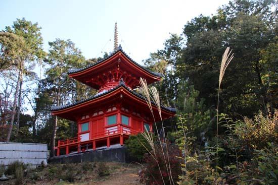 紅葉が始まった 今熊野観音寺_e0048413_22412044.jpg
