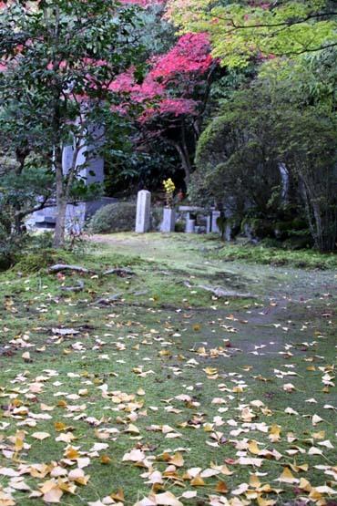 紅葉が始まった 今熊野観音寺_e0048413_22412643.jpg