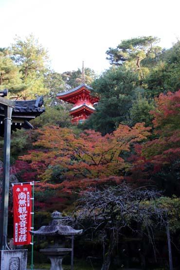 紅葉が始まった 今熊野観音寺_e0048413_22413763.jpg