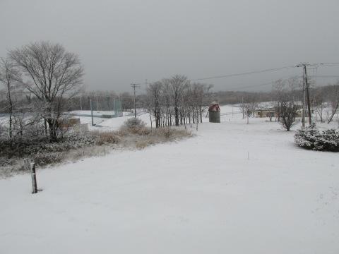 積雪2センチ!_d0072917_19184350.jpg