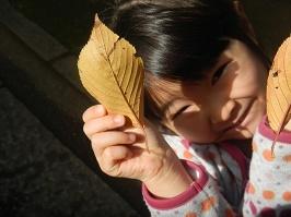 Leaf hunt_f0153418_10510978.jpg