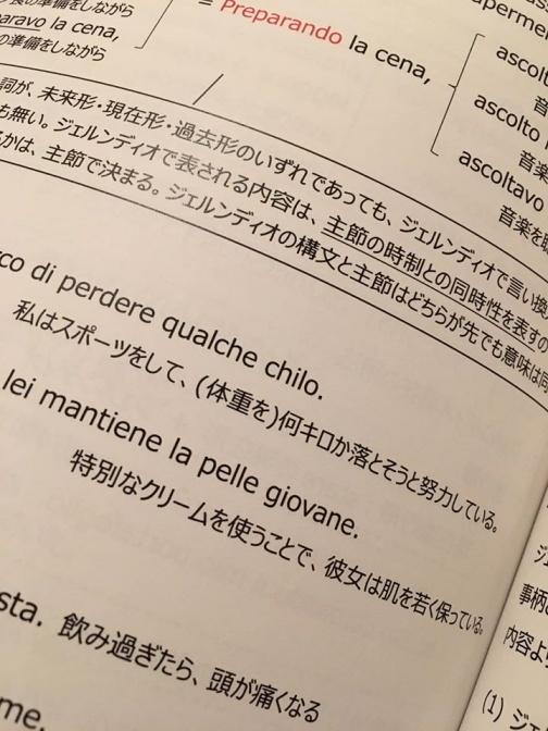 お友達が中上級イタリア語文法の本を出版しました。_d0041729_08470378.jpg
