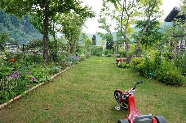 6月のノラの庭_e0365880_19305924.jpg