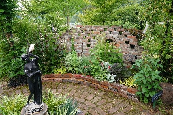 6月のノラの庭_e0365880_19311480.jpg