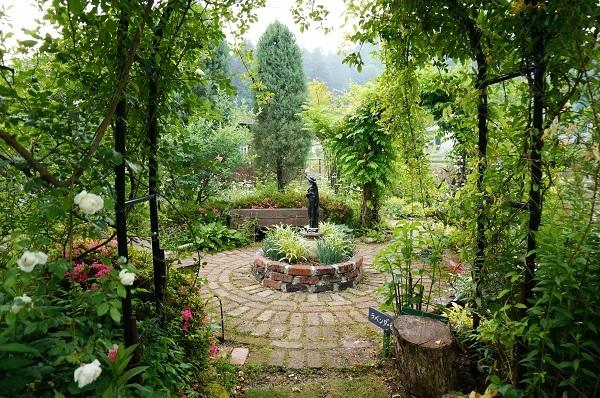 6月のノラの庭_e0365880_19312630.jpg