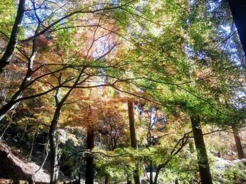 環境芸術の森(厳木町)_d0195183_23551622.jpg