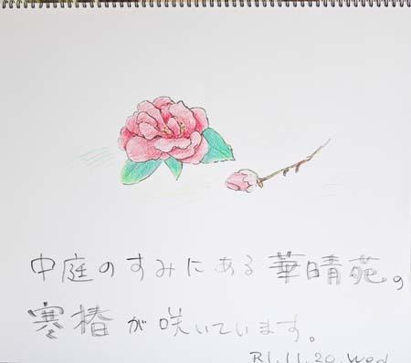 寒椿_b0364195_09220153.jpg
