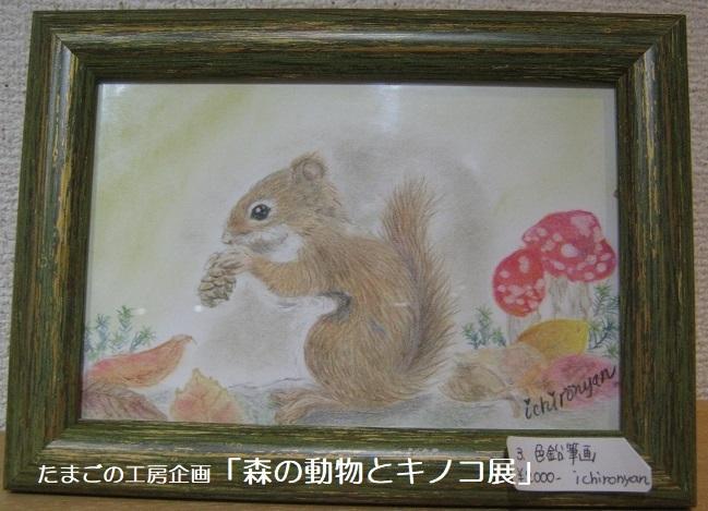たまごの工房企画「森の動物とキノコ展」 その3_e0134502_16484821.jpg