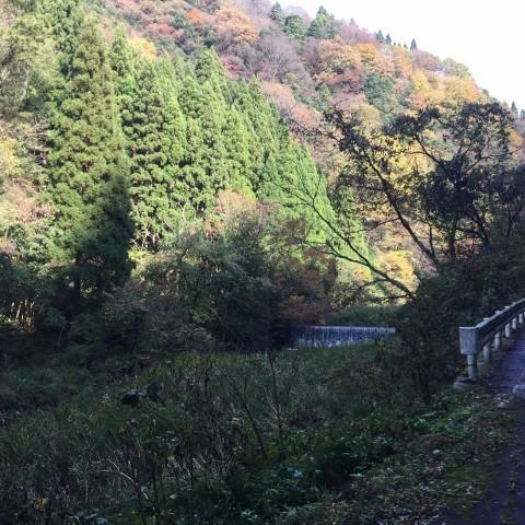 秋のトレッキング   大滝_e0115904_12305667.jpg