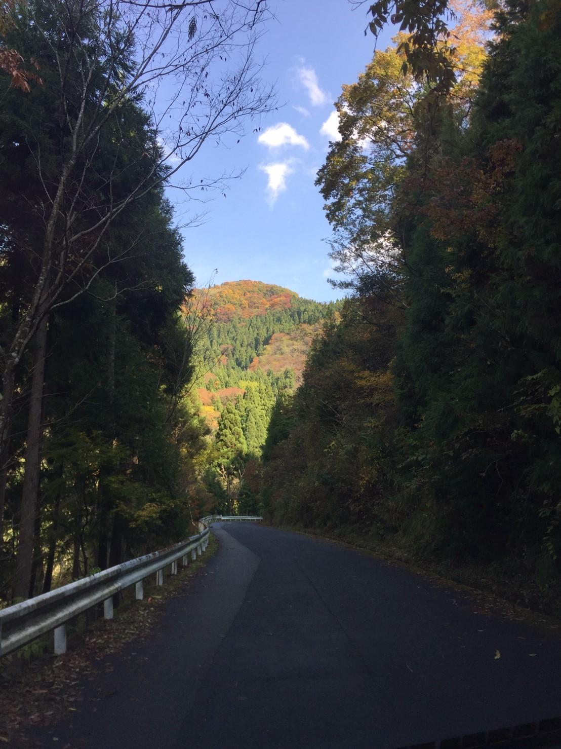 秋のトレッキング   大滝_e0115904_12305723.jpg