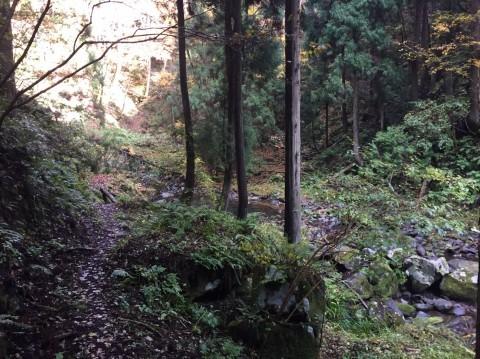 秋のトレッキング   大滝_e0115904_12374432.jpg