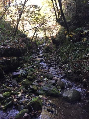 秋のトレッキング   大滝_e0115904_12374490.jpg