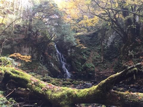 秋のトレッキング   大滝_e0115904_12591994.jpg
