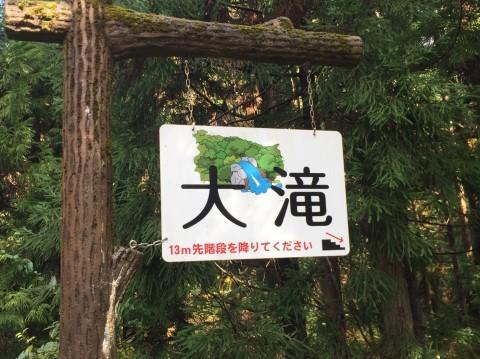 秋のトレッキング   大滝_e0115904_12593316.jpg