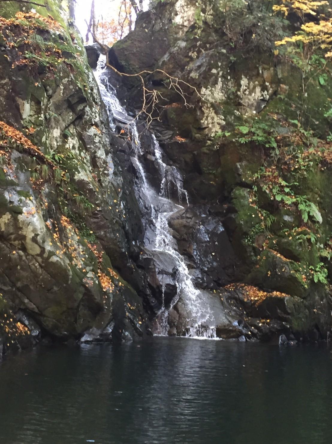 秋のトレッキング   大滝_e0115904_13201562.jpg