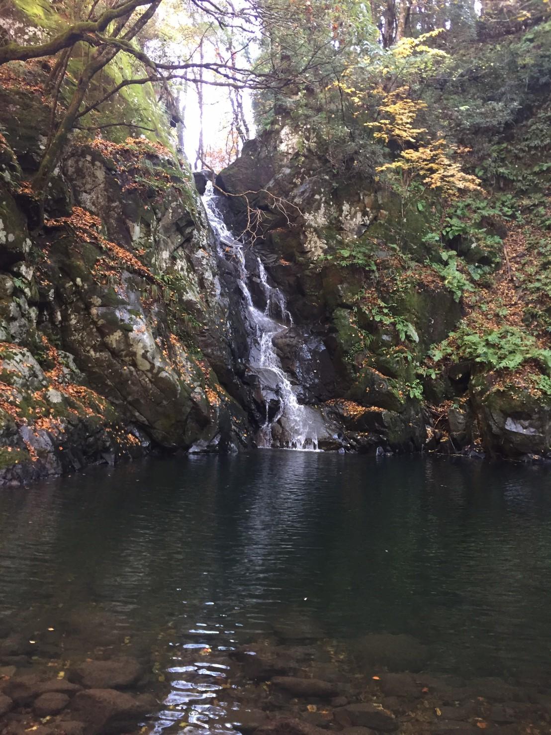 秋のトレッキング   大滝_e0115904_13221712.jpg