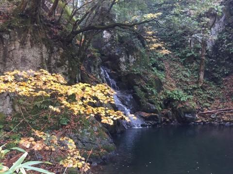 秋のトレッキング   大滝_e0115904_13225723.jpg