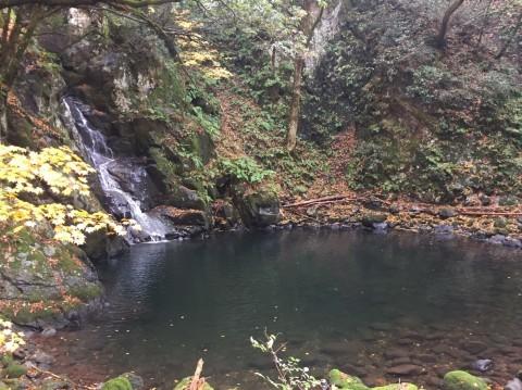 秋のトレッキング   大滝_e0115904_13225725.jpg