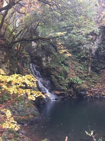 秋のトレッキング   大滝_e0115904_13225760.jpg