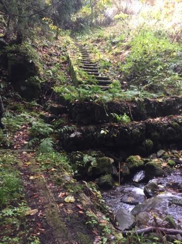 秋のトレッキング   大滝_e0115904_14133638.jpg