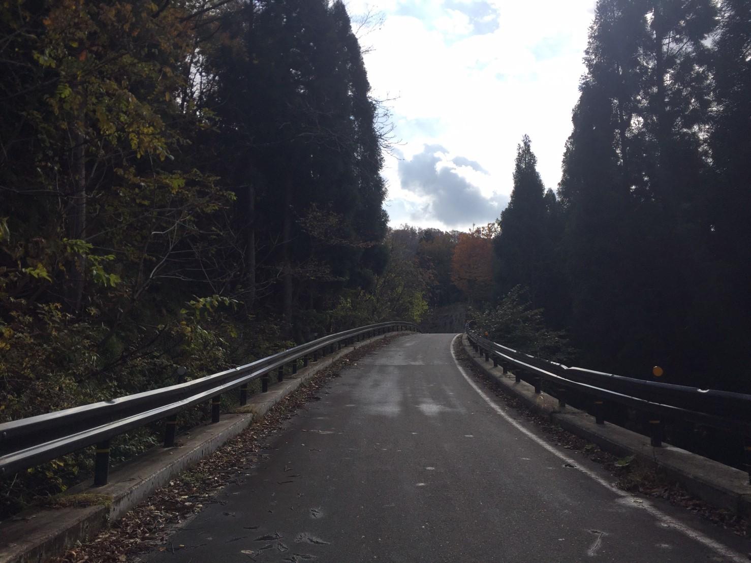 秋のトレッキング   大鹿滝_e0115904_15330646.jpg
