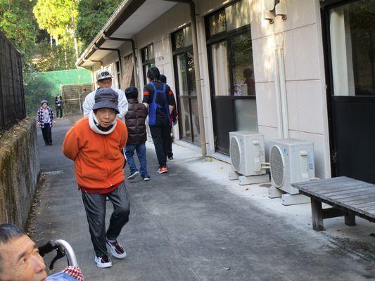 11/20 散歩_a0154110_09325880.jpg