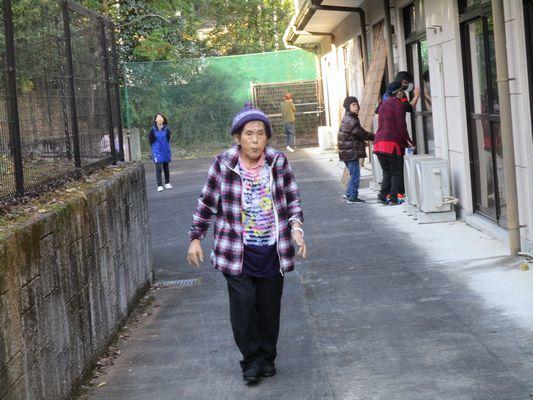 11/20 散歩_a0154110_09330534.jpg