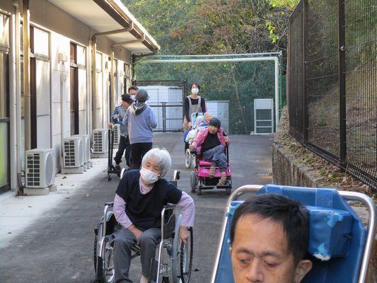 11/20 散歩_a0154110_09330694.jpg
