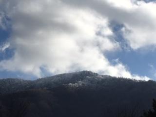 11月21日(木)朝の気温−2℃。_c0089831_22125488.jpeg
