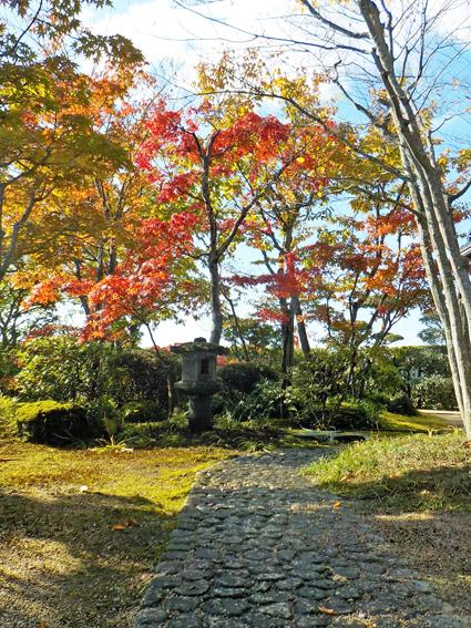 紅葉の苔庭_f0045132_14382475.jpg