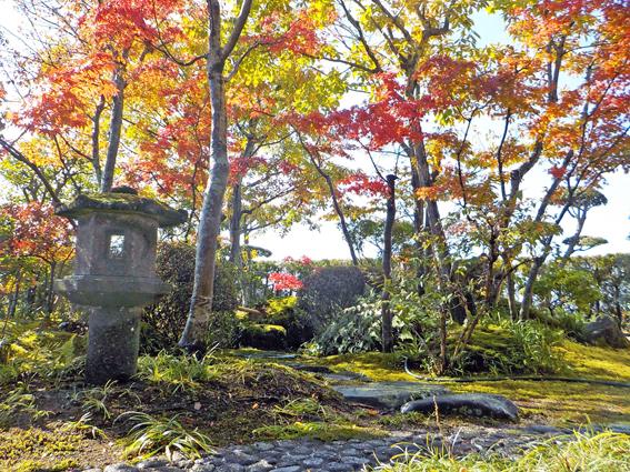 紅葉の苔庭_f0045132_14382768.jpg
