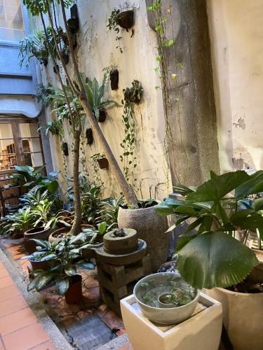 台湾料理_b0346442_08505973.jpeg