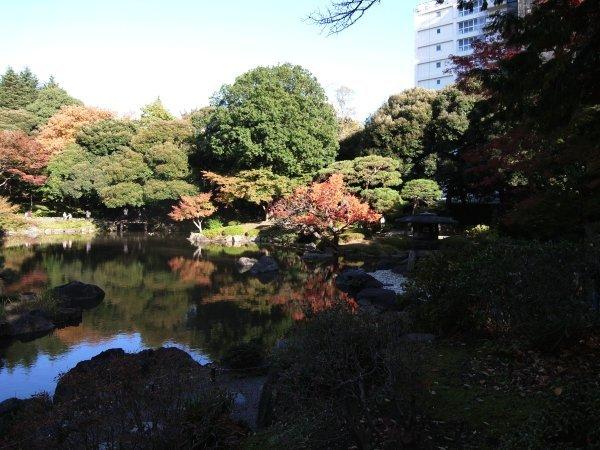 旧古河庭園 薔薇と紅葉_e0129750_23025269.jpg