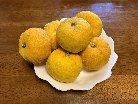柚子を頂きました_c0327752_17250271.jpg