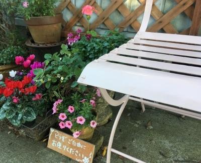 ご自由にお座り下さい!_f0103755_23012648.jpeg