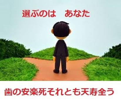 選ぶのは あなた_d0338857_15581481.jpg