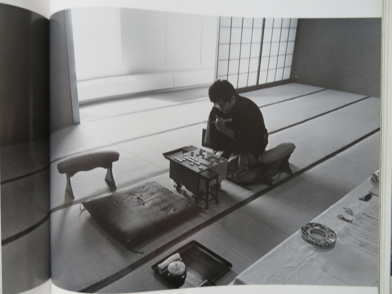 将棋はパーフェクトなレゴミニズム芸術である!_d0241558_12213375.jpg
