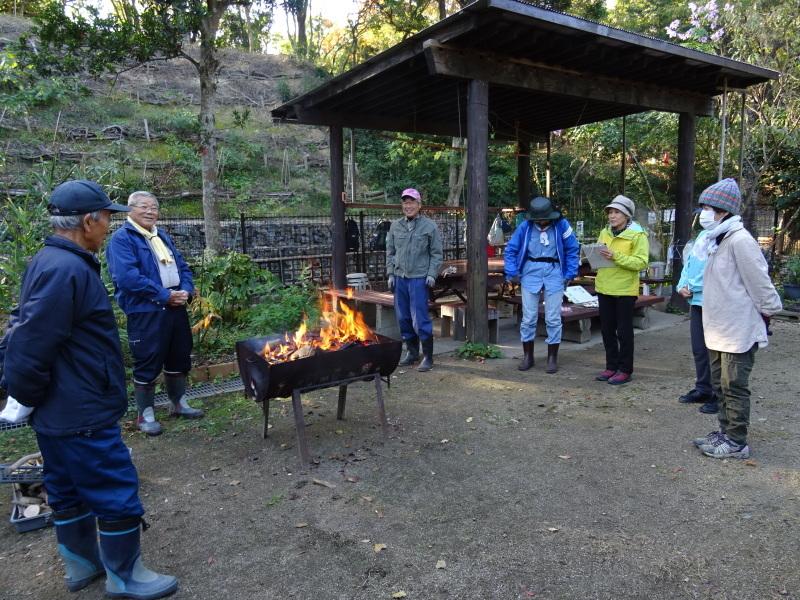 木の伐採は 楽しい作業・・・うみべの森_c0108460_15344912.jpg