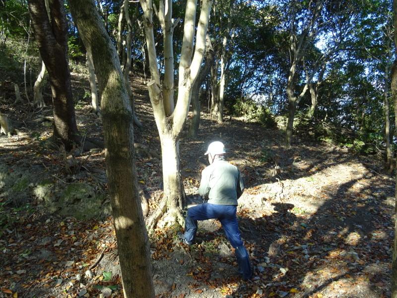 木の伐採は 楽しい作業・・・うみべの森_c0108460_15362498.jpg