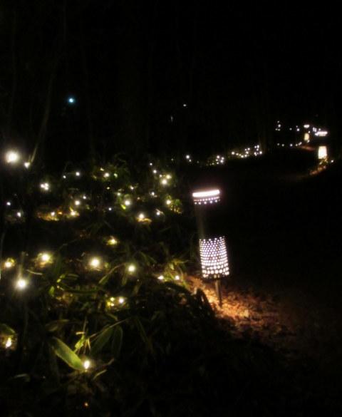 ハルニレテラス「幸せが灯る街」* やどりぎのイルミネーション♪_f0236260_01232016.jpg