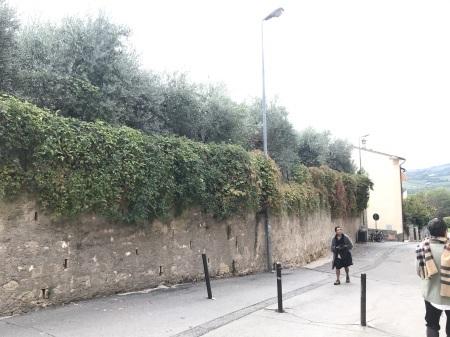 秋な壁、秋な道_a0136671_06511684.jpeg