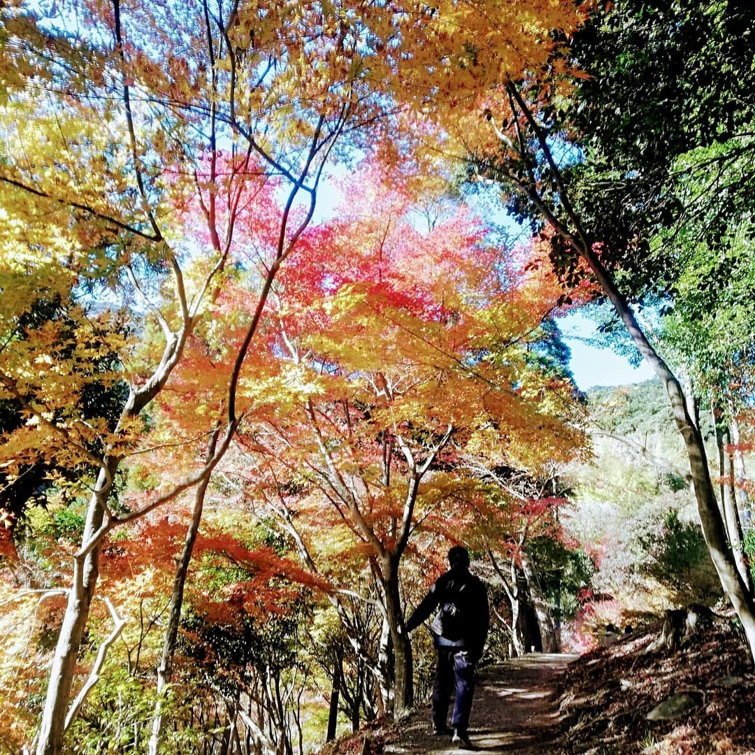 環境芸術の森(厳木町)_d0195183_00020670.jpg