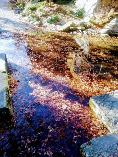環境芸術の森(厳木町)_d0195183_00101993.jpg