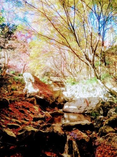 環境芸術の森(厳木町)_d0195183_00124127.jpg