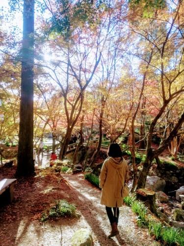 環境芸術の森(厳木町)_d0195183_00140620.jpg