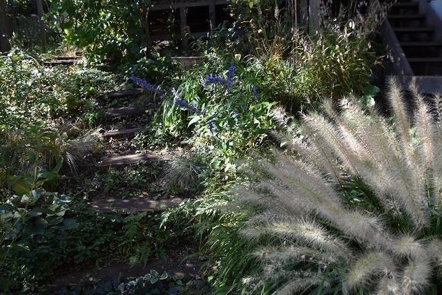 11月24日「緑でつながる庭づくり 秋編」です!_c0124100_18285886.jpg