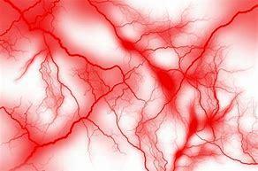 血管が消えてしまう!「ゴースト血管」あなたは大丈夫?_b0179402_11444441.jpg